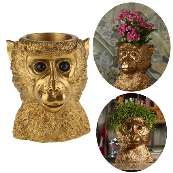 Übertopf Golden Monkey Affe 23x20cm Blumentopf Pflanztopf Blumenkübel