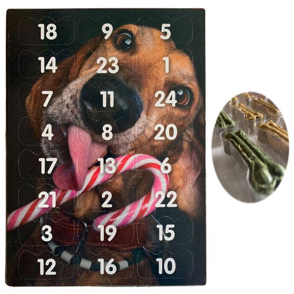 Hunde Adventskalender Basset 27x20cm 24 Leckerli´s Hundeknochen